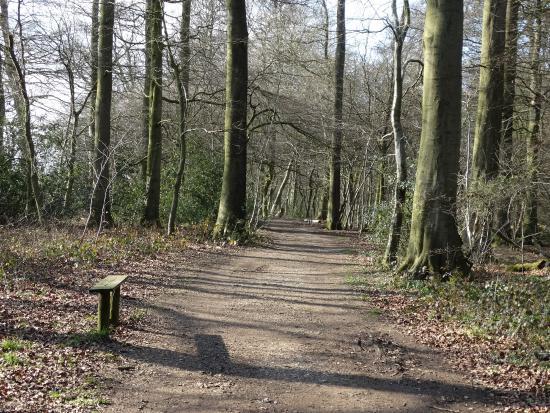 Aston Rowant United Kingdom  city images : ... Picture of Aston Rowant Discovery Trail, Aston Rowant TripAdvisor