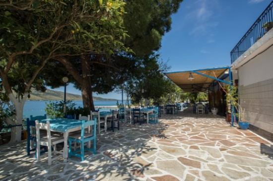 Plataria, Grecia: havana beach bar