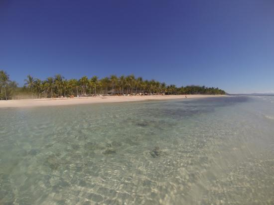 beach picture of bohol beach club panglao island tripadvisor rh tripadvisor com