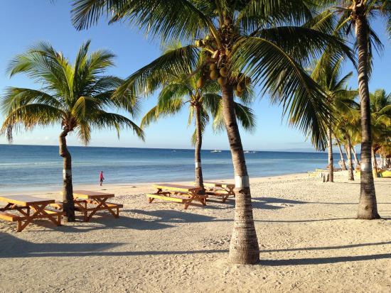 beach picture of bohol beach club panglao island tripadvisor rh tripadvisor ie