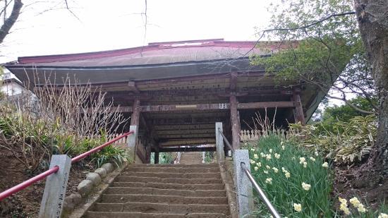 Chokoku-ji Temple: 長い階段