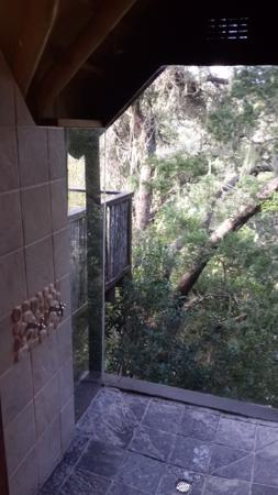 The Phantom Forest Eco-Reserve: Shower Area