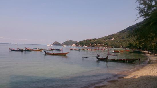 Seashell Resort Koh Tao: DSC_3568_large.jpg