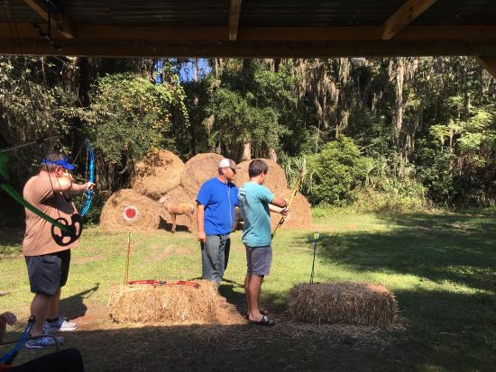 Micanopy, FL: Coon Hollo Farms October 2015