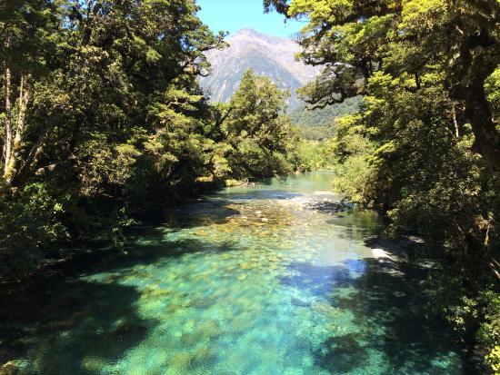 ควีนส์ทาวน์, นิวซีแลนด์: Clear rivers we could drink from... and did!