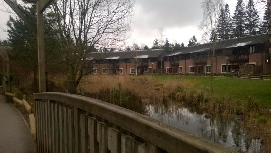 Lakeside Apartments Picture Of Centre Parcs Whinfell Forest Penrith Tripadvisor