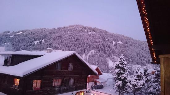 Hotel-Restaurant Alphorn: DSC_1124_large.jpg