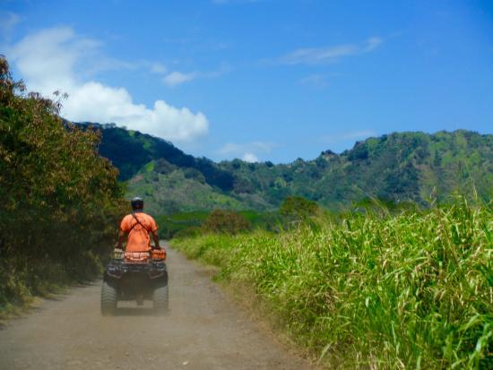Kalaheo, HI: ATV ride