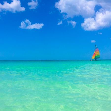 Zanzi Beach Resort Negril Reviews