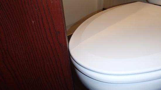 Hampton Inn Denver West / Golden: Small Bathroom