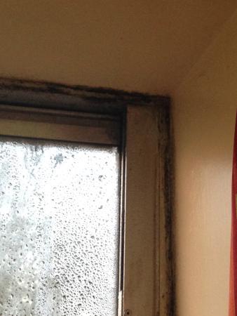 YMCA Bath: Black Mold on Windows!!!!
