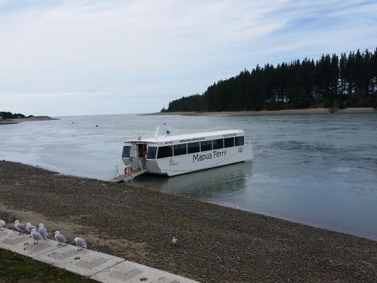 Mapua Ferry