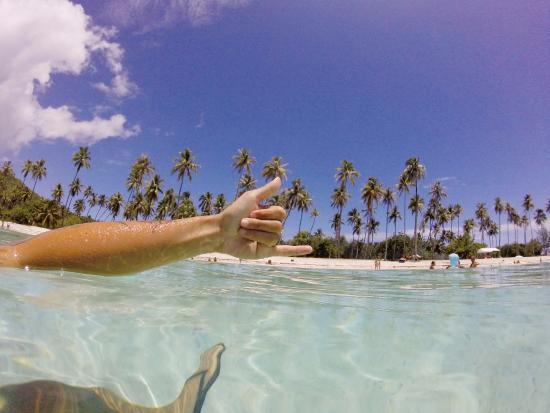 Moorea, Polynésie française : Il fait bon vivre a temae