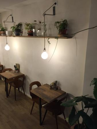 Wild The Moon Very Relaxing Place With Cool Ambiance Many Hanging Plants And