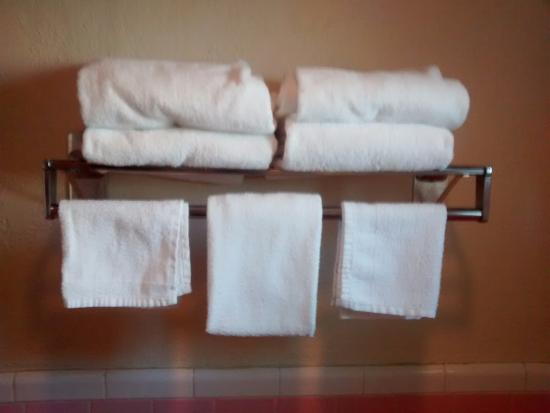 BEST WESTERN Thunderbird Motel: Nice clean towels!