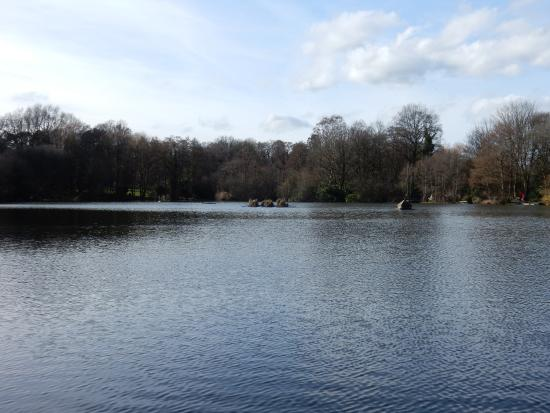 Early morning at Acton Park.