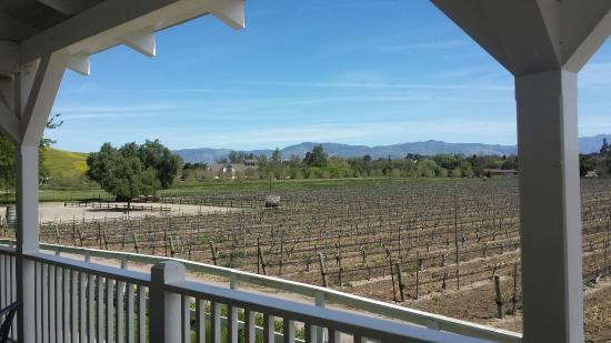 Solvang, CA: Such a lovely day for a wine tour with Tom!
