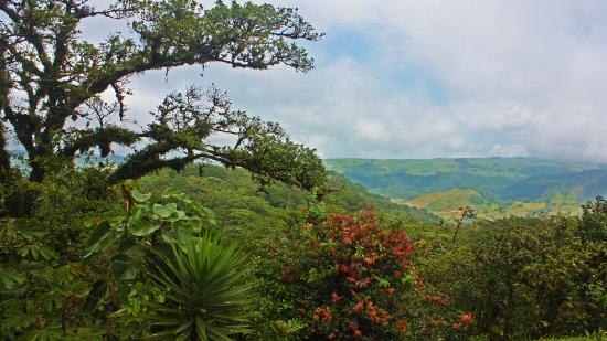 San Ramon, Costa Rica: View from the edge of the cliff - great place for a hot tub or pool guys!?!?!?
