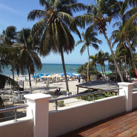 Vista desde la terraza/restaurante