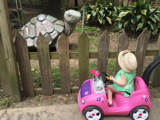 Zoo Of Acadiana: Norah is 1 and loved this visit especially the aviary and fish (Nemos).