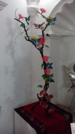 Huizache - Arte Vivo de Oaxaca