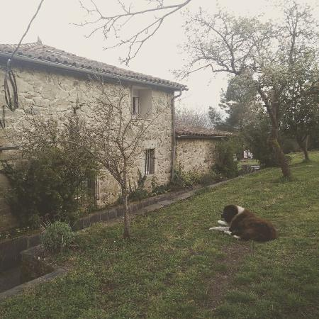 Casa Dos Muros: IMG_20160325_094125_large.jpg