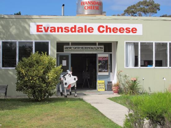 Otago Region, Selandia Baru: Cheese merchant with tasting on road from Dunedin to Oamaru