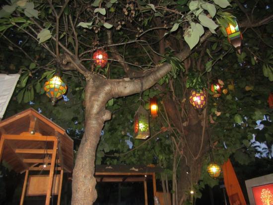 Warung Damar = feast of lanterns - Picture of Warung Damar, Kuta