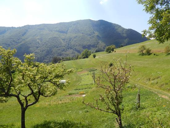 Mount Blegos: Blegoš from distance