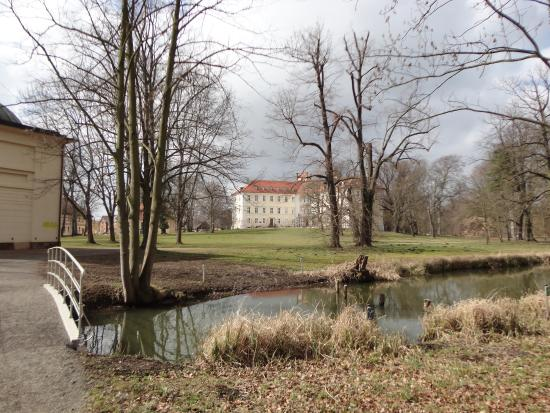 Spreewald Photo