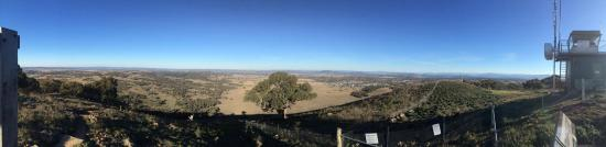 One Tree Hill Lookout Walk (Centenary Trail)