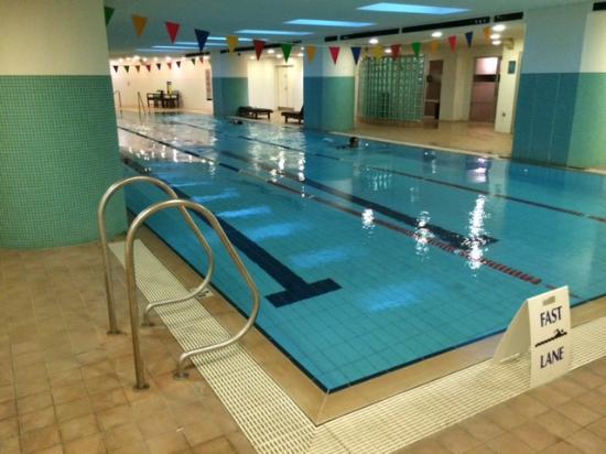 The indoor pool - Picture of Hilton Sydney - TripAdvisor