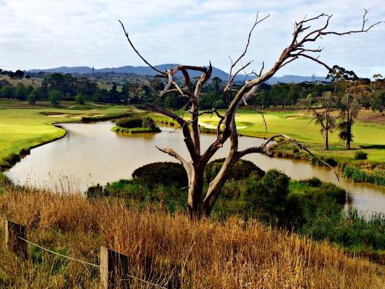 Chirnside Park, Australia: Majestic & Marvelous