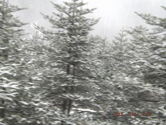 The Fortuna: Snow fall