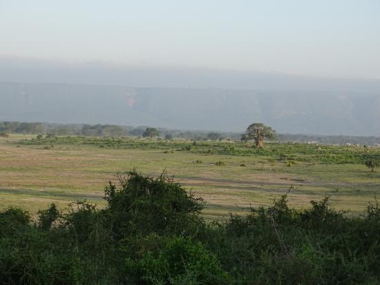 Manyara Wildlife Safari Camp: Utsikt fra rommet