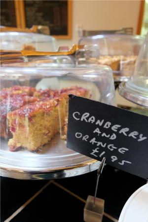 Brandon Country Park: Yummy cakes in the Copper Beech Tea Room