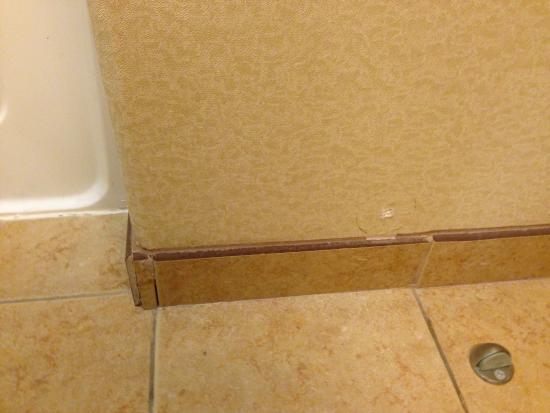 Hampton Inn & Suites Pharr : rm 404: baseboard in need of repairs