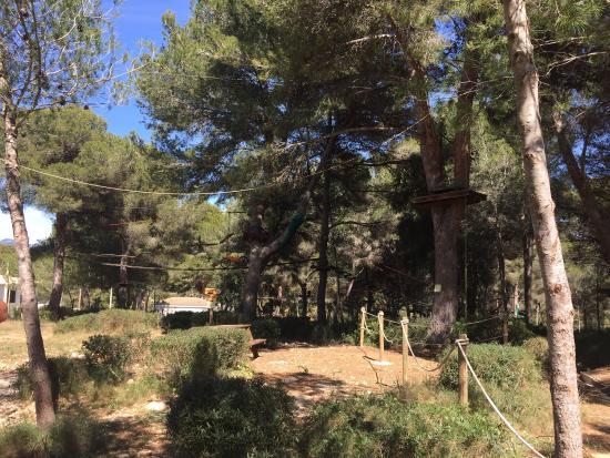 Exploratory at jungle parc - Picture of Jungle Parc, Santa Ponsa - TripAdvisor