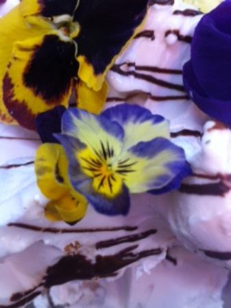 Gelateria Kremmy: limone profumato alla lavanda con violette bio