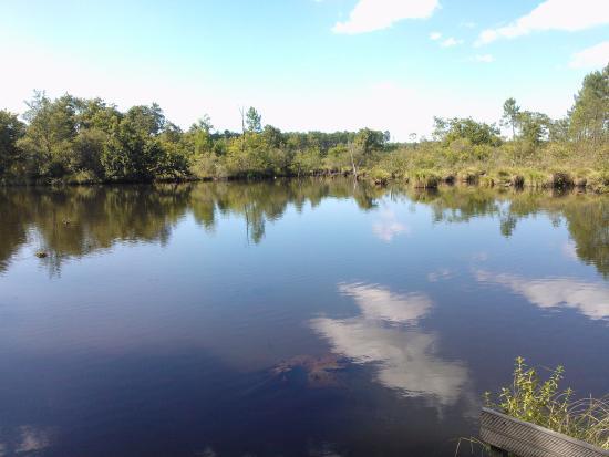 Lac de la Sablère