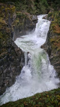 Little Qualicum Falls Provincial Park: 20160326_162303_HDR-01_large.jpg