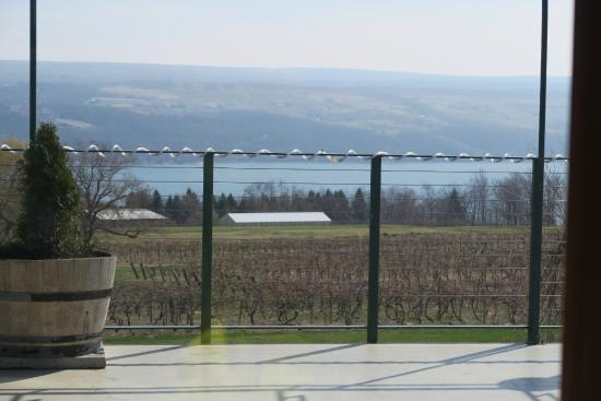 Dundee, Νέα Υόρκη: The view of the vineyard and Seneca Lake from our table