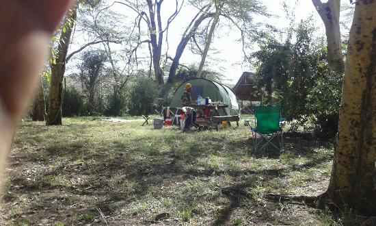 Oasis Eco Camp: 20160326_095304_large.jpg