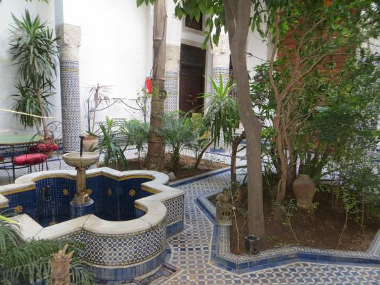 Riad Louna: In the garden with orange trees