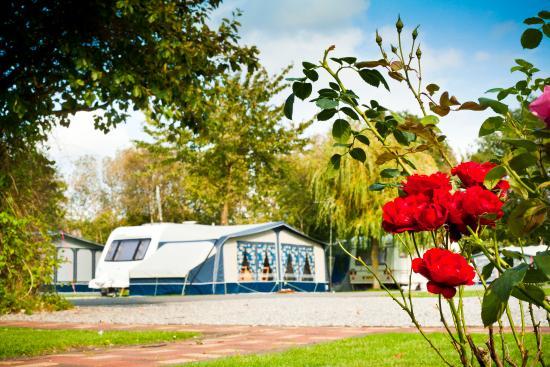 Vale of Pickering Caravan Park