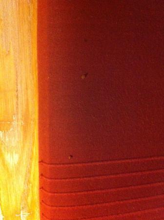 NH Collection Palacio de Burgos: Bichos por las parede tapizadas