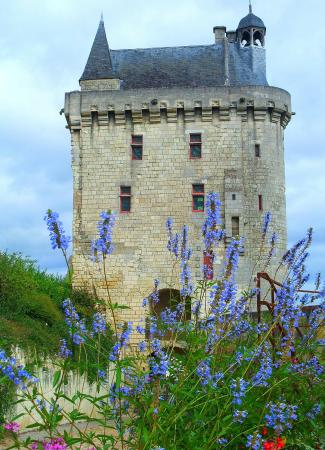 Forteresse royale de Chinon: La porte d'accés et sa tour