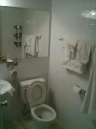 Rosslyn Inn and Suites: Bath