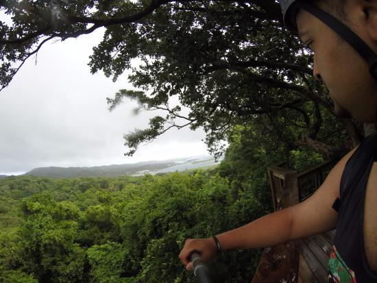 Clip N  Zip Canopy Tours: The view of from the first Zip