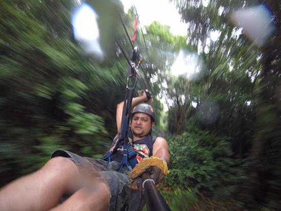 Clip N  Zip Canopy Tours: 26kph